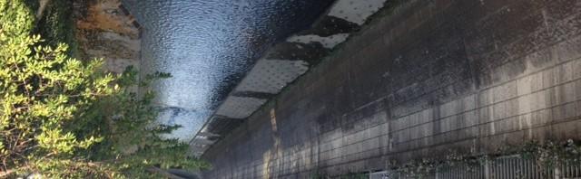 淀橋の下流、栄橋から見る神田川